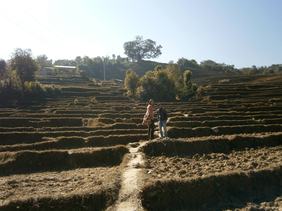 1.terraces.k.lee_.khrishna